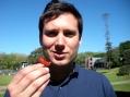 food3_tl_richard_juicy_strawberry