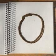 Soil Circle #4 - 1/7/20